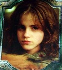 hermione_crookshanks_jpg