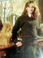 hermione_leaning_jpg