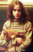 hermione_train_closeup_jpg