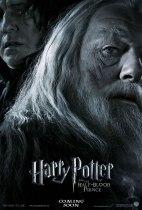 poster_DumbledoreSnape_jpg